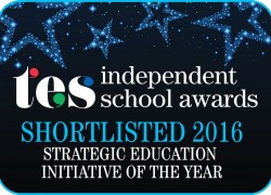 Strategic-education-initiative