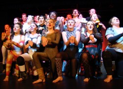 Over 250 Performers Unite for Celebration of Dance