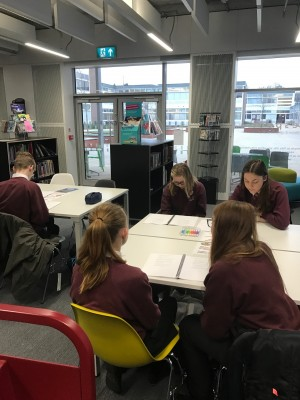 y7-y8-reading-project-february-2017