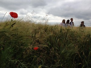 y9-ww1-battlefields-trip-june-2014