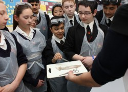 British Science Week was Brilliant