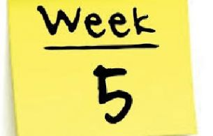 week-5-home-learning-resources
