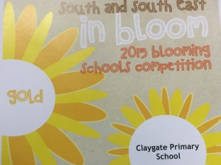 Blooming Schools Gold Award