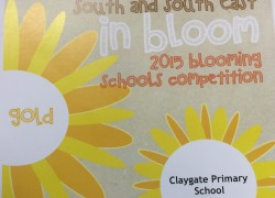Blooming Schools Gold Award