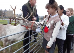 Reindeer Visit to School
