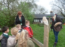 Year 1's Lee Valley Farm Trip