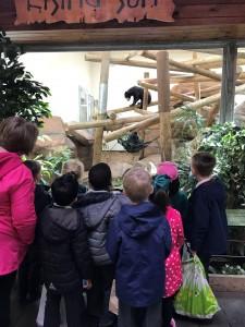 Colchester Zoo Trip 1
