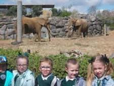 Colchester Zoo Trip 2