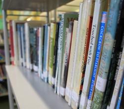 A Novel Way to Encourage Reading