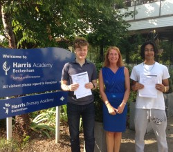 Outstanding GCSE Results for HABE