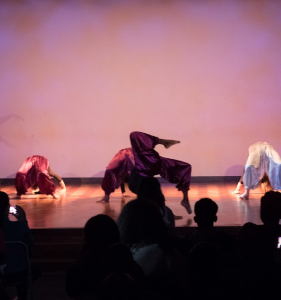 HAB Music and Dance Concert De...