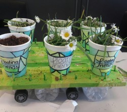 Science Week - Floating Gardens Project at KS4