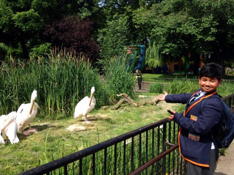 Renaissance day - London Zoo 2