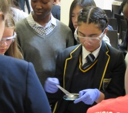 Discover Science at Kings College London