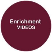 EnrichmentVIDEOS