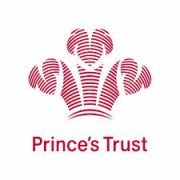 princes trustv2