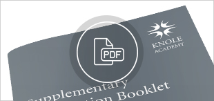 PDF_Icon_Additional