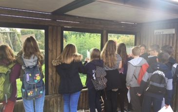 Year 8 Trip to Howletts