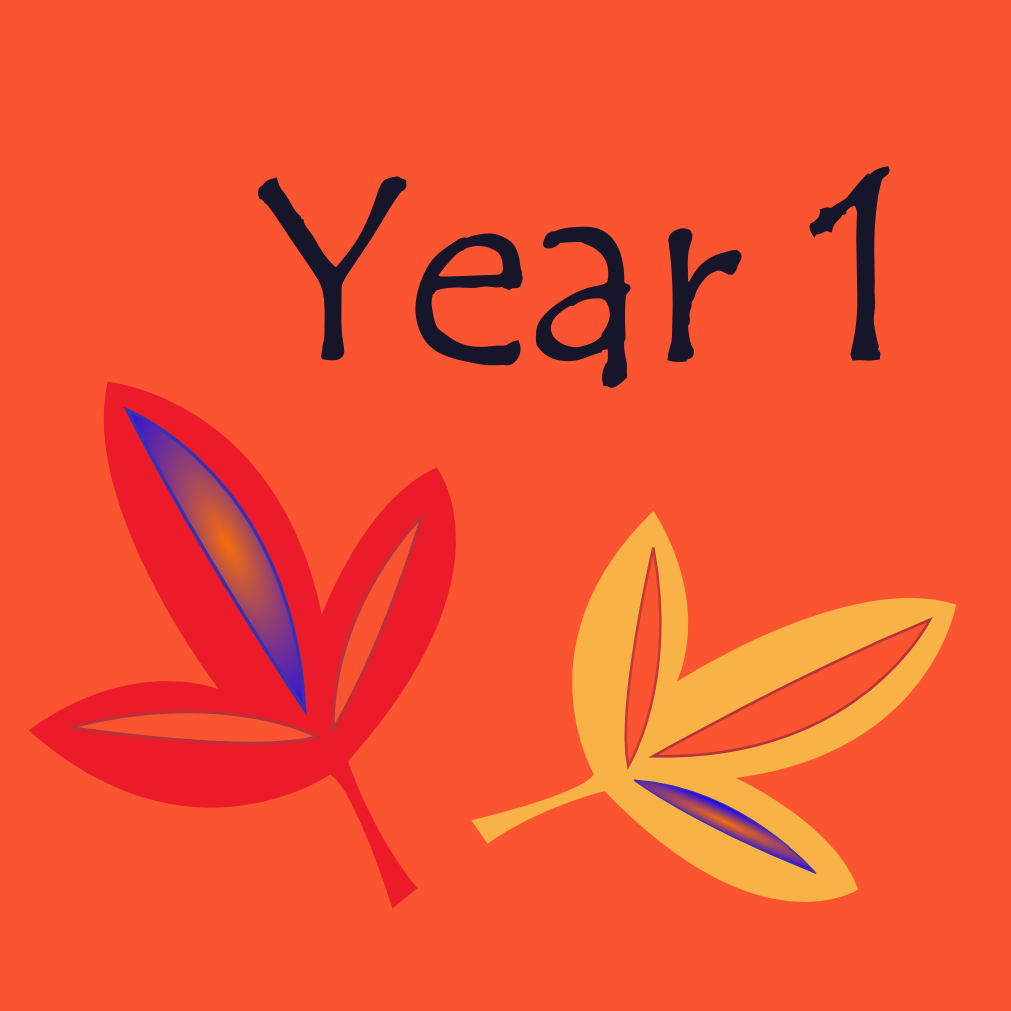 Year 1 Icon