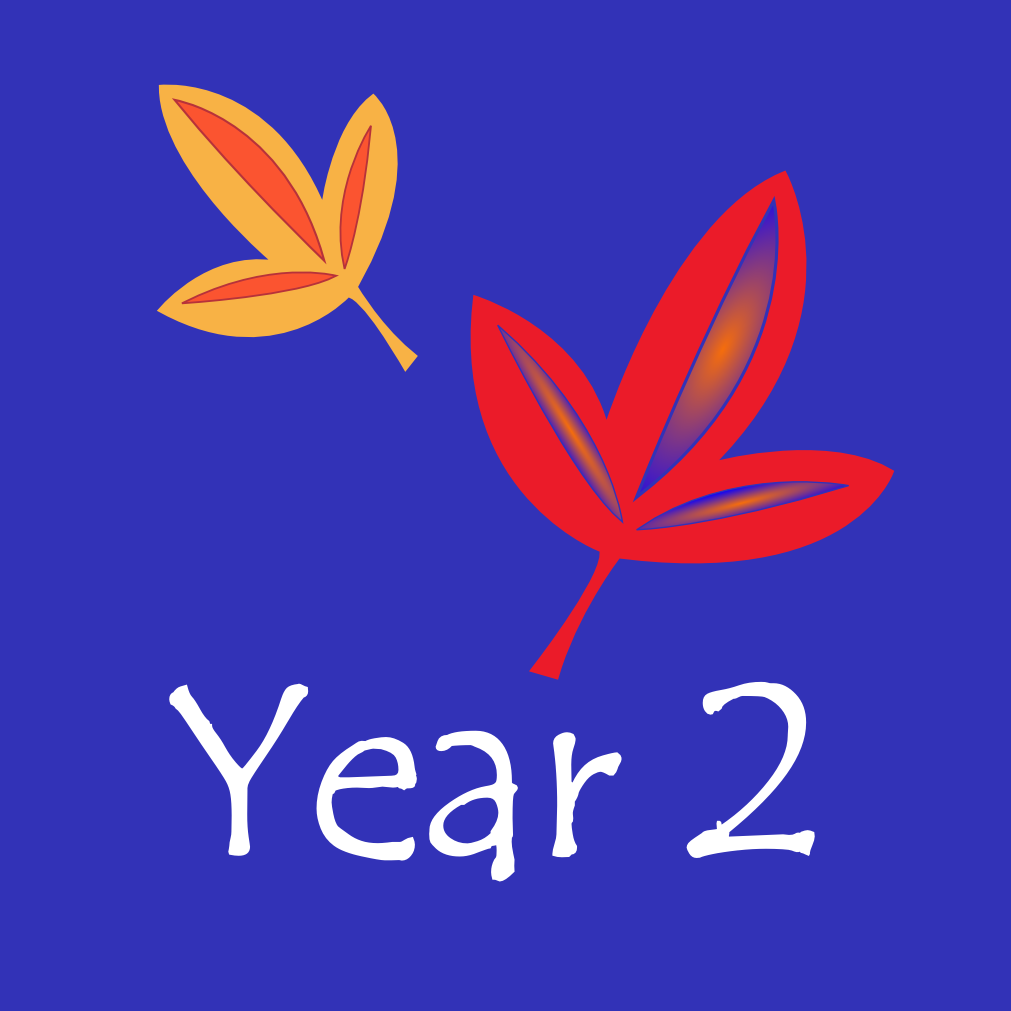 Year 2 Icon
