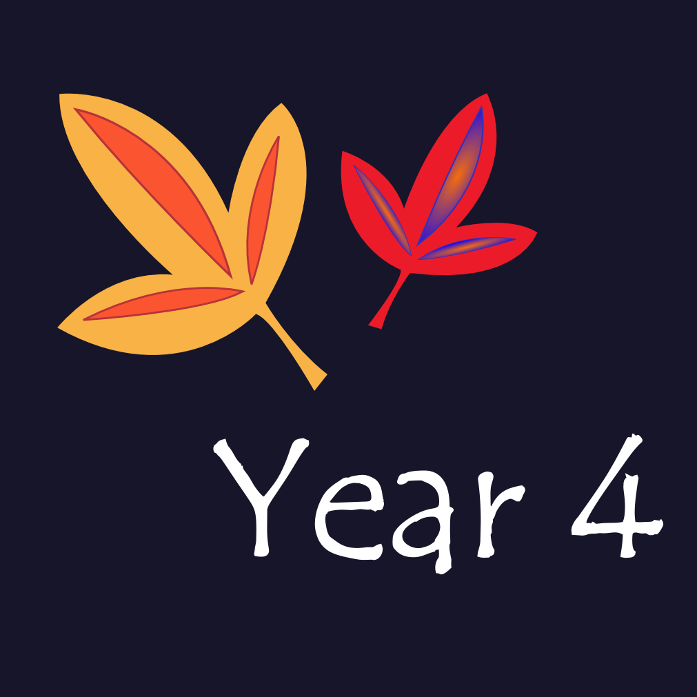 Year 4 Icon