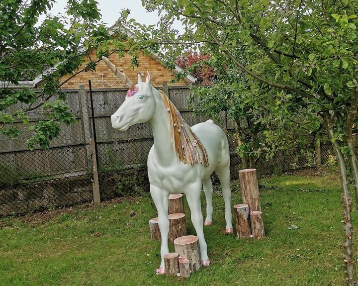 Unicorn wows primary pupils