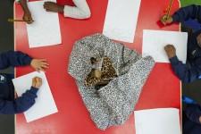 Montem_Primary_School_School_Image_Gallery - 19