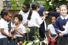 Montem_Primary_School_School_Image_Gallery - 48