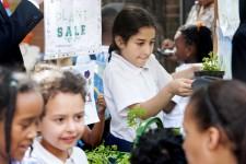 Montem_Primary_School_School_Image_Gallery - 184