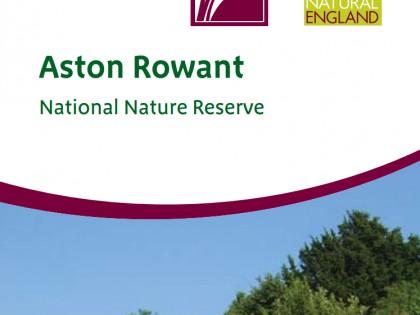 Y6 Aston Rowant