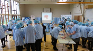 Operating Theatre Live at TPS
