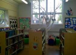New library is ready!