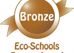 Eco Schools Bronze Award Achieved