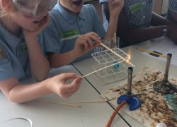 Science at Burnt Mill Academy