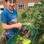 STS Gardening Club