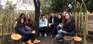 Students build a Willow Den