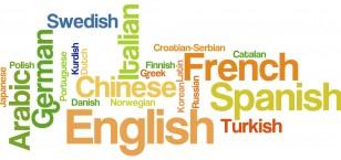 Language Leaders Report by Delphie Jeer