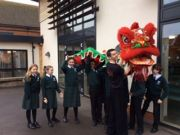 chinese new year celebrations 20 2