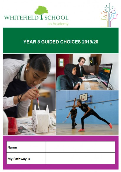 Year 8 Guided Choices Image