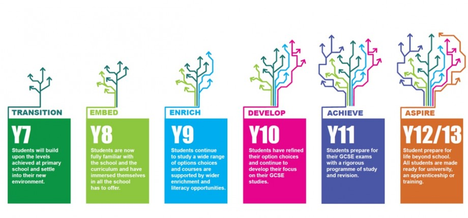 Year 7 to Y13 tree transitions
