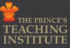 Working with The Prince's Teaching I...