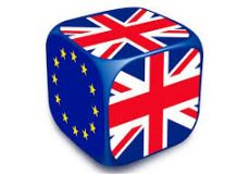 Whitefield Vote - EU Referendum