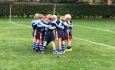 under-9-and-under-8-rugby-update