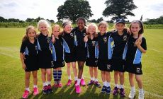 rounders-results
