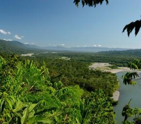 Manu_National_Park-71